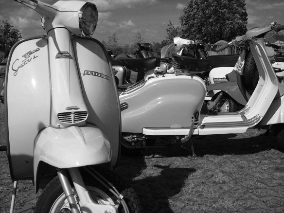 scooter8