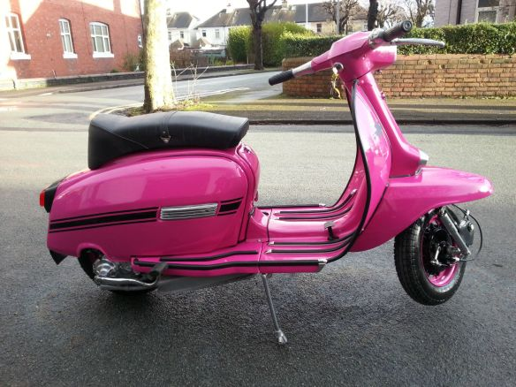 PinkGP-1